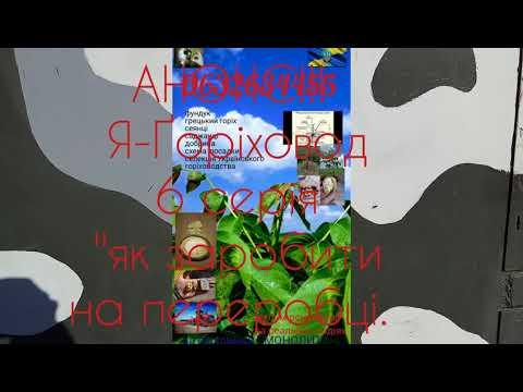 АНОНС! Я-Ґоріховод. 6 серія. ГРОШІ. Идеал, Кочерженко, Яцек, Иван Багряный. Фундук.