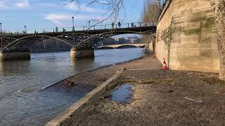 Polluted Seine River and Trash on River Banks Paris