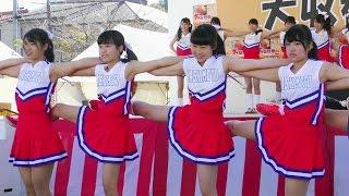 橋本高校 新体操・バトン部 大収穫祭 IN 九度山 2016
