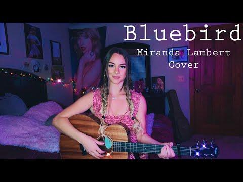 Bluebird-Miranda Lambert Cover