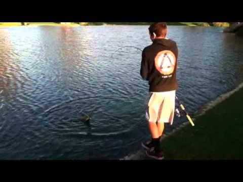 Team Socal Anglers: Jig Fishing the Ponds
