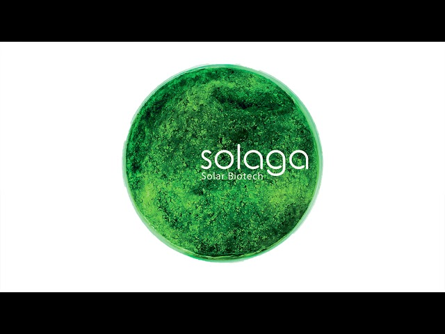 Pitching sessions: Solaga