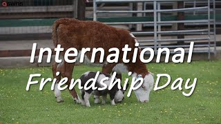 Happy International Friendship Day! These Pals Prove Friendship Knows No Bounds