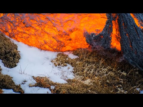 Up Close with Lava Devouring Everything in it's Path