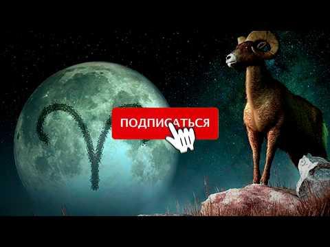 Лунный календарь для дачника  Работы в январе  Что и когда сеять.