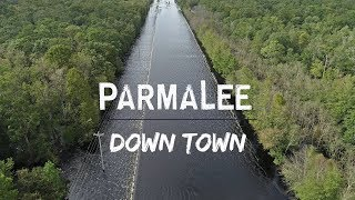 Parmalee - Down Town (Hurricane Florence Relief Song) Lyric Video