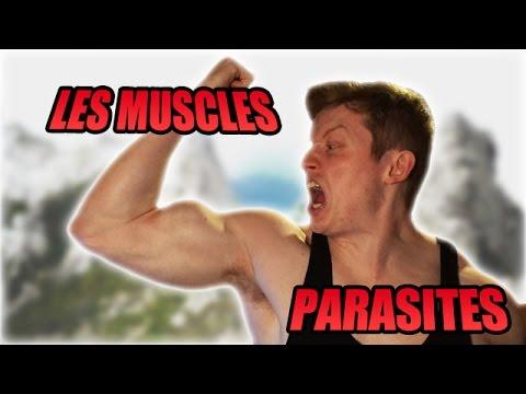 La date de la sortie 2 saisons du parasite