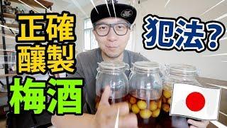 🉐正確日本自家釀製梅酒!做錯可能犯法?
