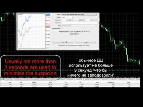 Инвестиции в трейдеров криптовалютой