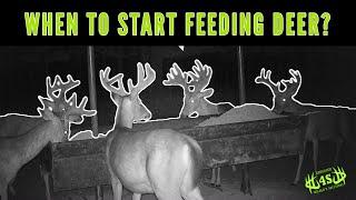 When Should You Start Feeding Deer?