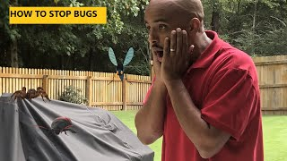 How to get rid of bugs in your yard
