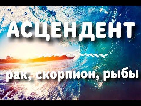 АСЦЕНДЕНТ ⬅️ СТИХИЯ ВОДА 💦 РАК ♋ СКОРПИОН ♏ РЫБЫ ♓