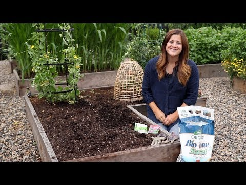 Planting For Fall Harvest! 👩‍🌾🌿// Garden Answer