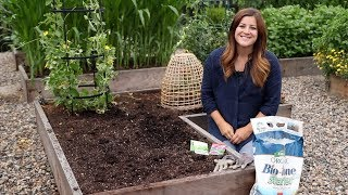 Planting For Fall Harvest! 👩🌾🌿// Garden Answer