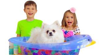 Max and Katy groom pets at home