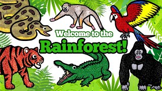 Learn Wild Rainforest Animals, Learn Names and Sounds for Kids   Zoo Animals Matching Game