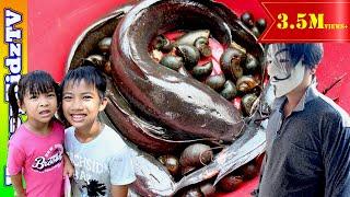 ปลาดุกยักษ์ กับ คนใส่หน้ากาก พี่แชมป์น้องปาน Happykidztv