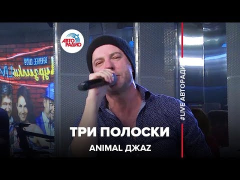 Animal ДжаZ - Три Полоски (LIVE @ Авторадио)