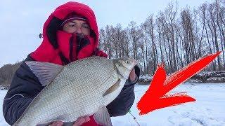 Снасть для ловли на леща зимой