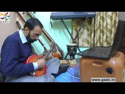 Mandolin beginners training online Skype lessons Guru learn how to play Carnatic music Mandolin
