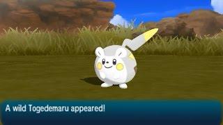 Togedemaru  - (Pokémon) - Togedemaru Location - Pokémon (Ultra) Sun & Moon