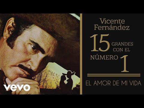 Vicente Fernández - El Amor de Mi Vida (Tema Remasterizado) [Cover Audio]