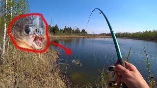 Рыбалка i чернобыль зона отчуждения 2 сезон