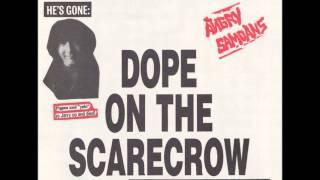 Angry Samoans - Heroin - 1996