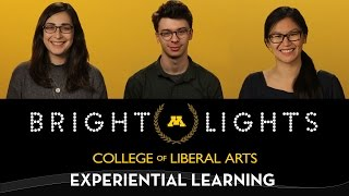 2017 UMNCLA Bright Lights: Experiential Learning