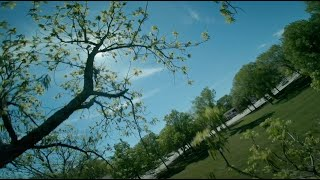 "FPV Freestyle and lucky tree miss(s) - Kiss/Fettec - ImpulseRC Apex 5"" - T-Motor F40 IV - Ethix P3"