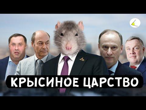 «Крысиное Царство»   Путинизм как он есть #8