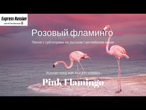 Russian Song Rozoviy Flamingo by Alena Sviridova with EN CC/ Розовый фламинго Алёна Свиридова