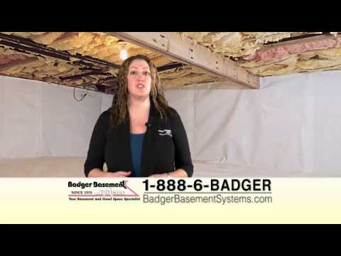 Here at Badger Basement Systems, we help solve a variety of common homeowner problems including the annoyance that pests can have on a home. A home should be frequently checked for pests especially if living in an area where pests such as mice, ants, termites, etc. are common.  Common signs of pest intrusion/problems include corroded wood, ripped insulation, holes around the perimeter of the foundation, among others.