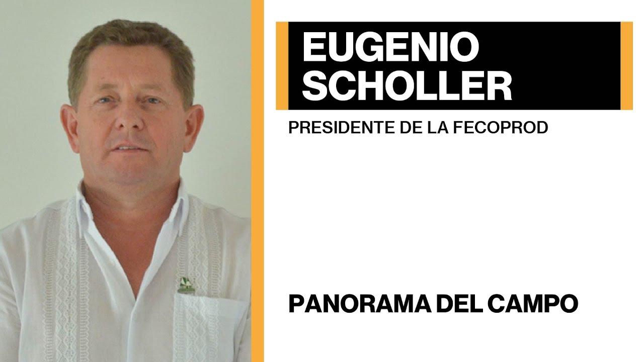 Eugenio Scholler - Panorama del campo