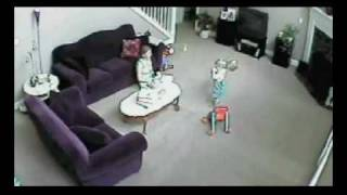 Cat Saves Child From Mom