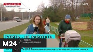 Москвичи нарушают правила самоизоляции вопреки рекомендациям - Москва 24