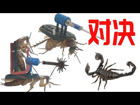 裝備電動武器的小強 VS 蠍子 究竟誰能勝出 !?