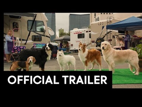 Autism Friendly Screening: Show Dogs