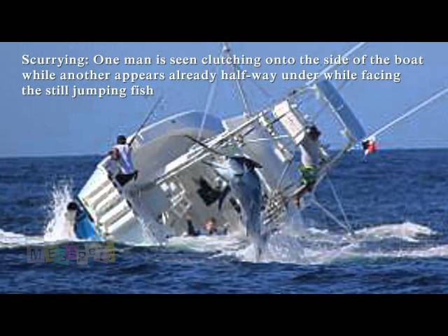 Marlin Sinks Fishing Boat. Vessel Capsizes After Hooking Huge Fish [Reuploaded]