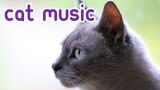 SUPER SOOTHING Cat Relaxation Music - Bond With Your Cat!