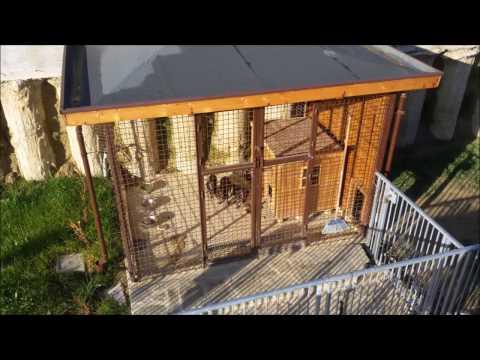 Costruzione di un box cani