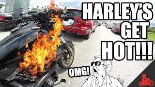 Harley's Get HOT! Monitoring Engine Temps Vol. 01 - Harley Dyna Low Rider S