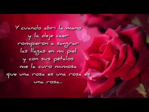 Mecano   Una rosa es una rosa CON LETRA