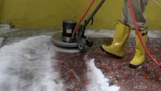 Rug Cleaning - Rotary Washing