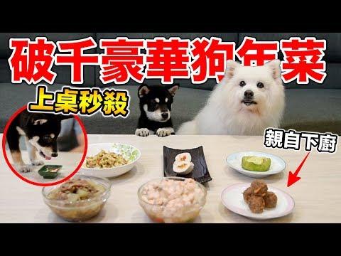 老人與狗!做一頓豐盛的狗年菜給咪咪,豆芽菜
