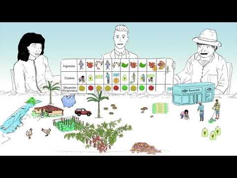 Vidéo Youtube - Proyecto PASAC : Herramienta de Educación Financiera (Gestión de crédito)