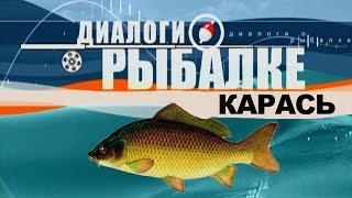 Рыбачьте с нами и диалоги о рыбалке