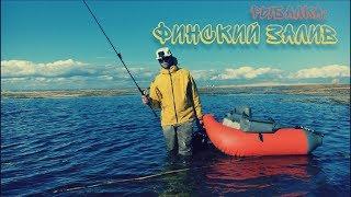 Запрет на рыбалку в финском заливе