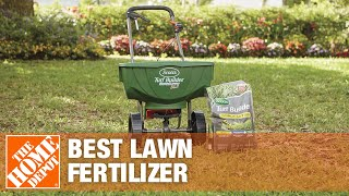 Which Lawn Fertilizer is Best for Your Lawn | The Home Depot