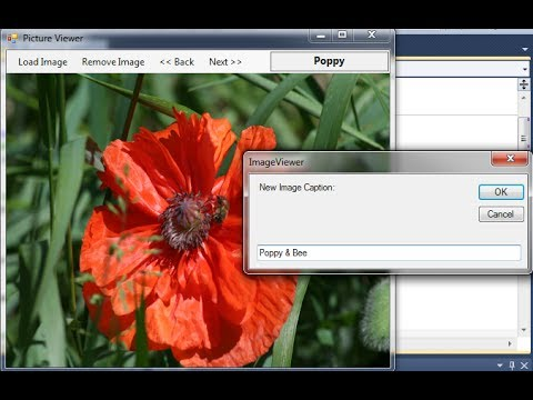 VB.NET Tutorial For Beginners – Simple Picture / Image Viewer (Visual Basic .NET)